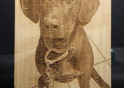 Engraved Dog Nicki
