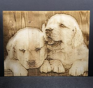Engraved Puppies 2