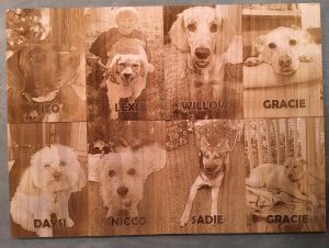 Engraved samples dogs 1
