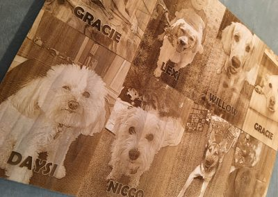 Engraved samples dogs 2
