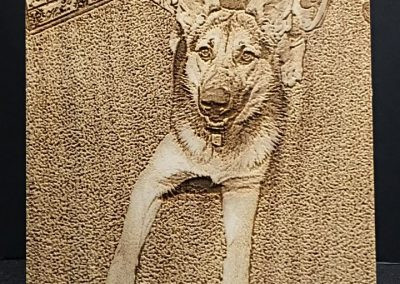 Watchdog Sadie