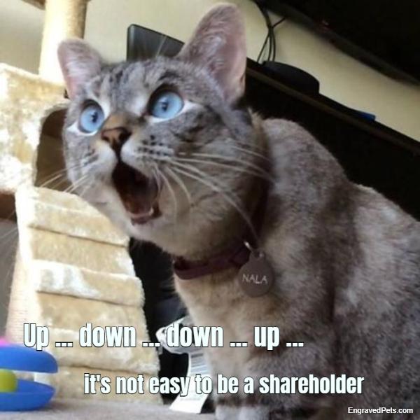 Pet Meme #1268